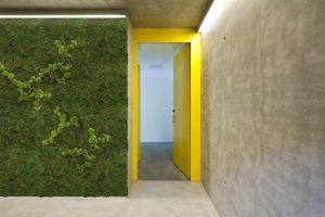 Eine Mosswand verbessert das Raumklima im Büro | Die 'Acoustic Greenwall 2.0' von Jeroen Besteman | © gp award